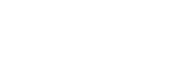 logo-oceane-profils-blanc